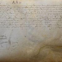 [Lettre patente de François Ier par laquelle il enjoint aux gens de sa cour des aides d'enregistrer la lettre de confirmation des privilèges d'Amboise]