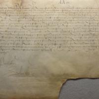 [Lettre patente de François Ier par laquelle il enjoint aux gens de comptes d'entériner la lettre patente de 1515 confirmant les privilèges d'exemption de la ville d'Amboise]