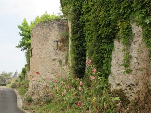 Tour de flanquement de la courtine occidentale du château d'Esvres-sur-Indre, XIIIe siècle ( ?). Cliché Maer Taveira.